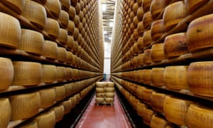 A cheese warehouse