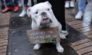 """In Bogotá, a dog wears a placard reading, """"We do not have voice nor vote... You do."""""""