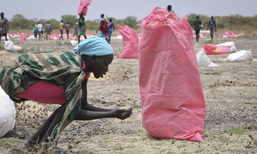 A woman scoops up fallen grain after an aerial food drop by the World Food Programme in Kandak, South Sudan.