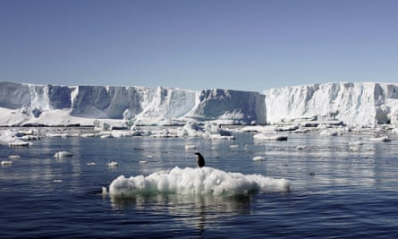 Sea ice levels in the Antarctic have experienced huge variability in the last few years.