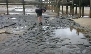 Norfolk beach ancient footprints