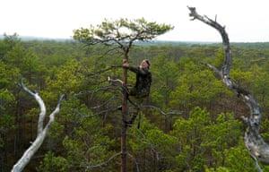Kazyany, BelarusOrnithologist Vladimir Ivanovski, 72, climbs a tree as he builds a nest for birds of prey in a marsh near the village of Kazyany.