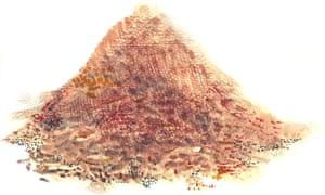Soil illustration