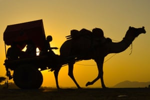 A silhouetted image of a man riding a camel cart in India