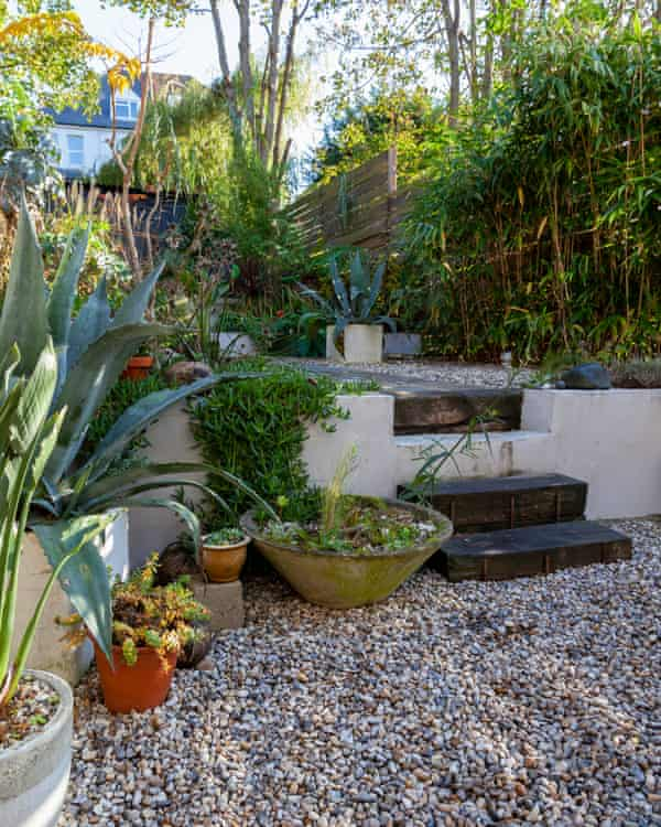 Sloping off: the newly landscaped garden.