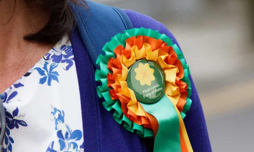 Leanne Wood of Plaid Cymru