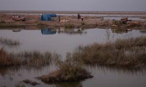 Poachers in the marshes near Amara