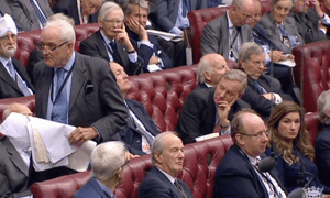 Viscount Hailsham speaking in the Lords debate on the EU withdrawal bill.