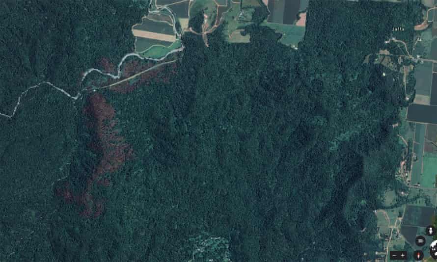 Google earth image of fire damage to the rainforest