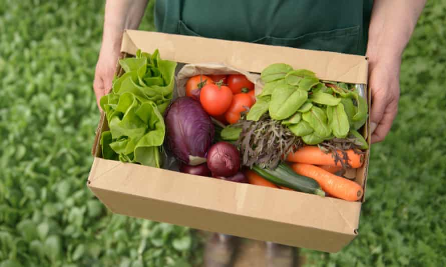 Sales of fresh organic vegetables are up by 15%.