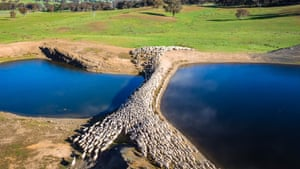 A mob of sheep crossing between two dams at Woodlea Park, Yass, New South Wales.