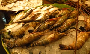 Prawns at the Lake Market, Kolkata.