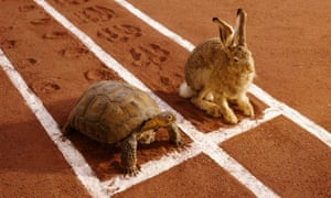 OK, it's not quite tortoise and hare, but ...