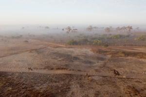 Jockeys ride their horses in the morning mist
