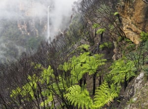 Govetts Leap in the early morning rain, Grose Valley, Australia, 26 March