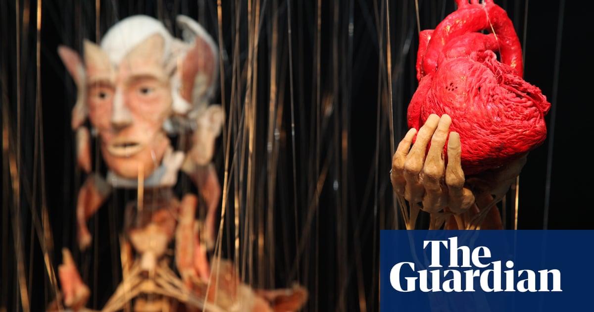 Gunther Von Hagens Body Worlds To Open London Museum Culture