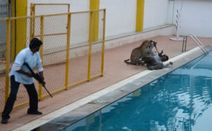Sanjay Gubbi is attacked by a leopard at a private school on the outskirts of Bangalore