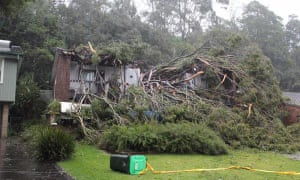 Storm damage in Newcastle, NSW, Australia on 21 April 2015. Shows a tree Tree chopping a house in half in Atherton Close, Rankin Park. Bad weather has battered the coast line in recent days. It's the worst storm in five years.