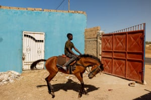Fallou Diop, 19, is training a young mare called Raissa Betty whom he hopes to compete with