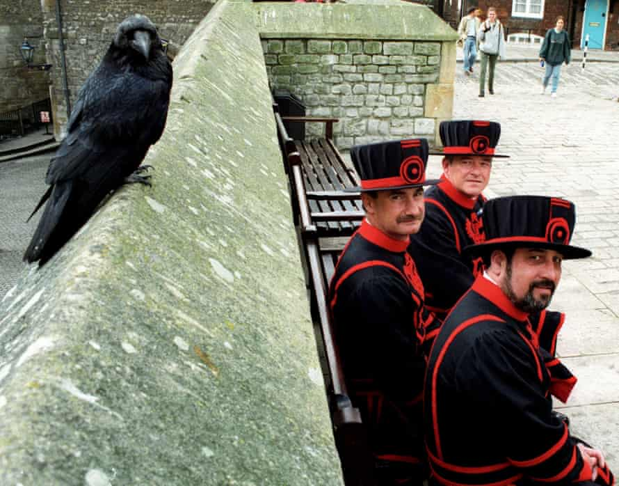 Beefeaters and a resident raven strike a pose.