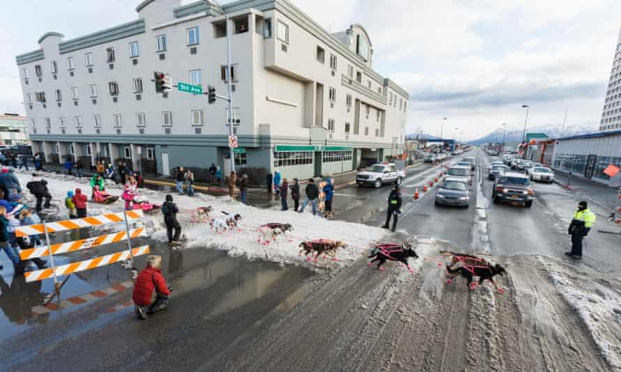 The ceremonial start day of Iditarod 2015 in Anchorage, Alaska.
