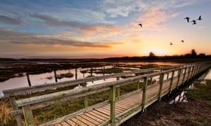 Newtown nature reserve, Isle of Wight