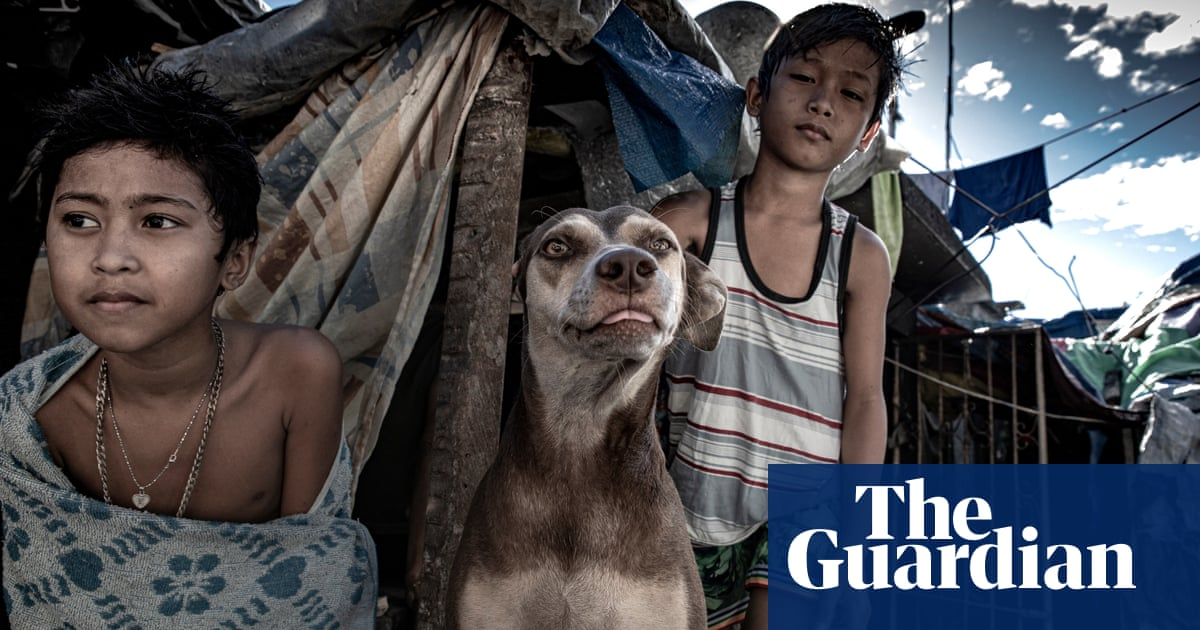 Dogs and humans live among the gravestones in Pasay cemetery, Philippines – a photo essay