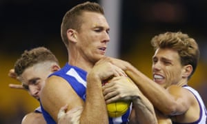 Heart and soul: North Melbourne veteran Drew Petrie brings up 300 games when the Roos take on St Kilda on Sunday.