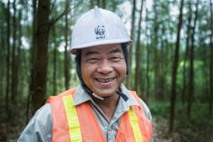 Ho Da The at work on his Forest Stewardship Council (FSC) certified acacia plantation, Phú Lộc district, Vietnam.