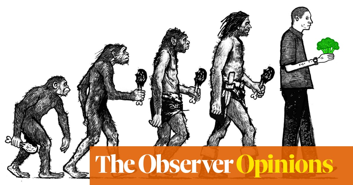 My beef with vegans says more about me than them | David Mitchell