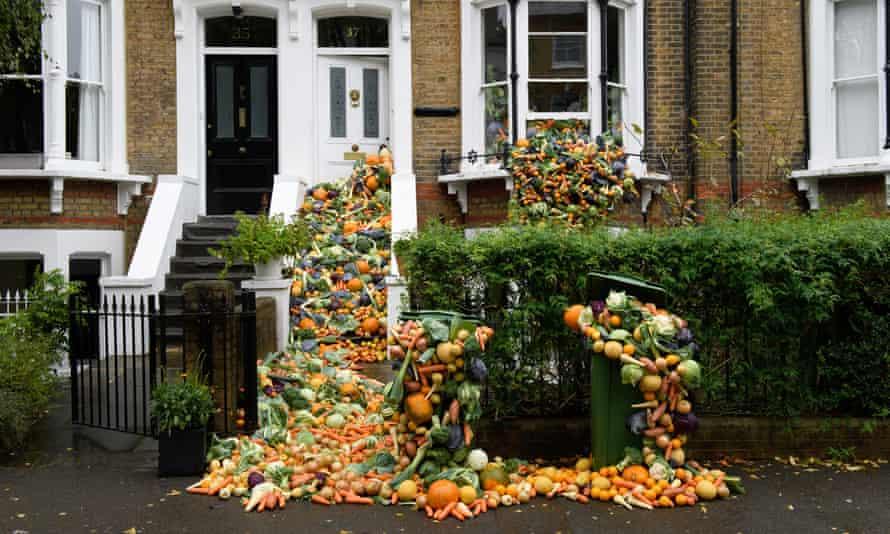 Food waste outside house