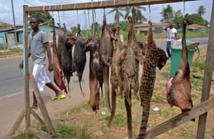 A man walks past bushmeat in Bata, Equatorial Guinea