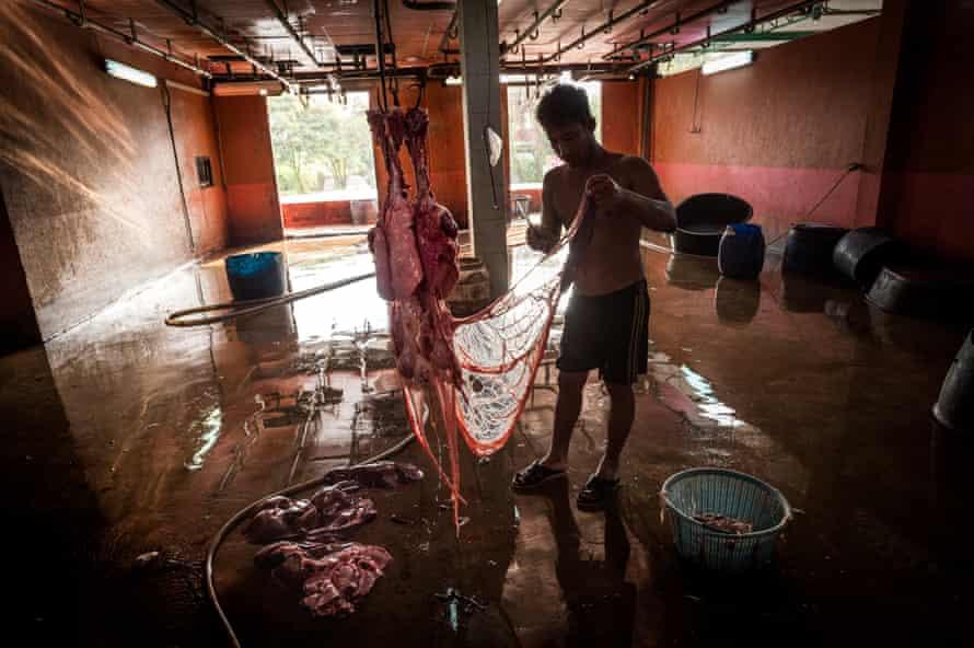 A Thai slaughterhouse worker dismantling a pig carcass