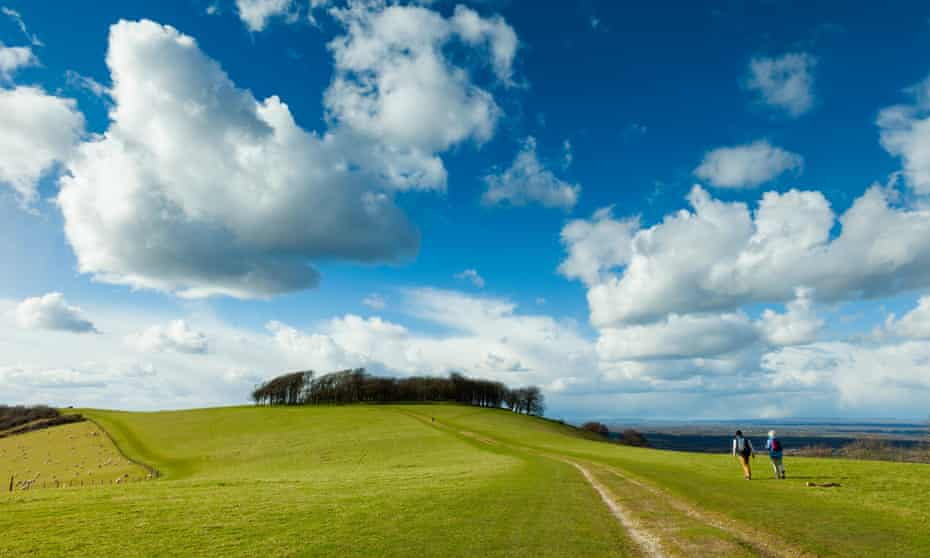 'The stretch of the South Downs Waynear the prehistoric hill fort of Chanctonbury is particularly beautiful': Washington, West Sussex.