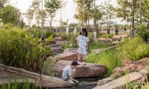 Wetland in Chulalongkorn Centenary Park.