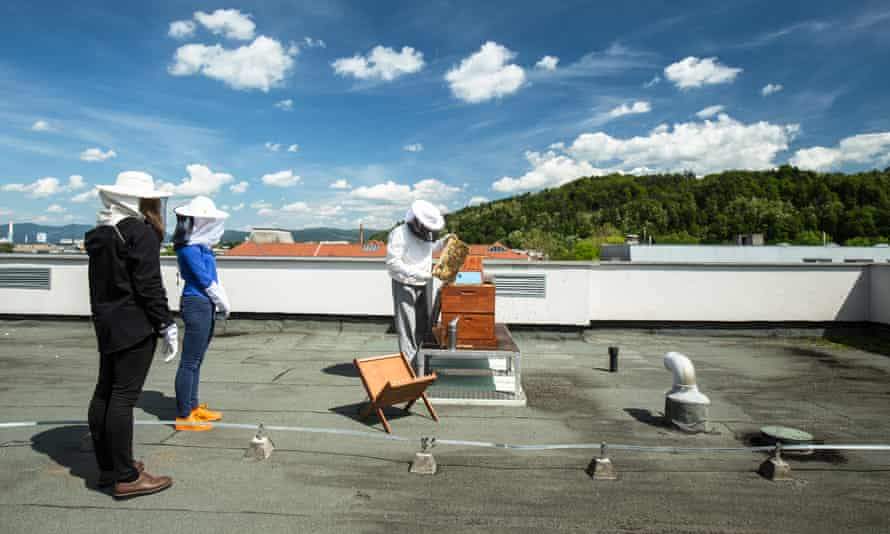 Urban beekeeper Gorazd Trusnovec shows the beehives to students on the roof of the Ljubljana Secondary School of Trade during a beekeeping class in Ljubljana, Slovenia, on May 16, 2017. Among other activities, beekeeping school clubs are a project started by the Slovenian Beekeepers Association and supported by the government. They are highly successful.