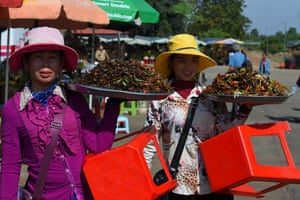 Kampong Cham, Cambodia. Trays of fried tarantulas and insects offered for sale to tourists in the town of Skun