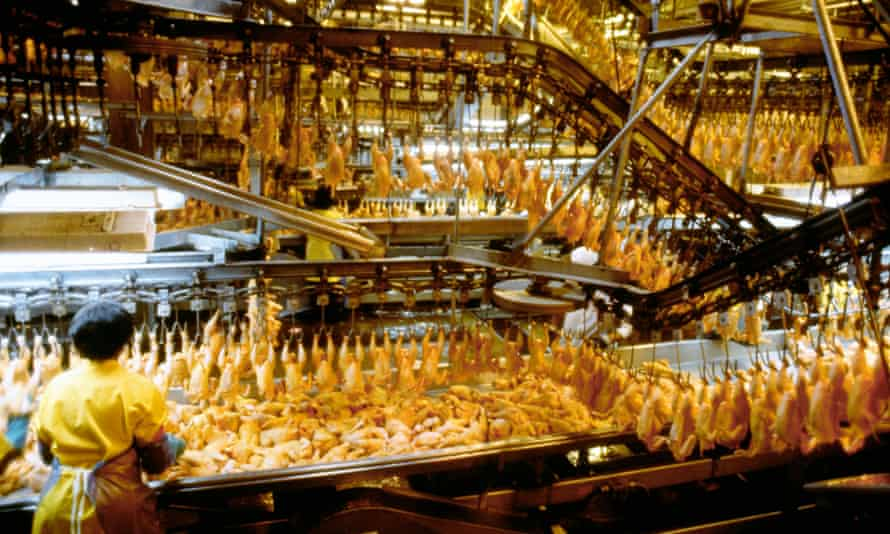 A chicken processing plant in the US.