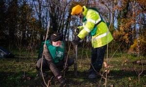Tree-planting at Beckton District Park South