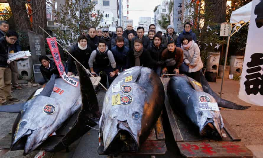 People pose for photos with a 405kg bluefin tuna, centre, outside Tsukiji fish market