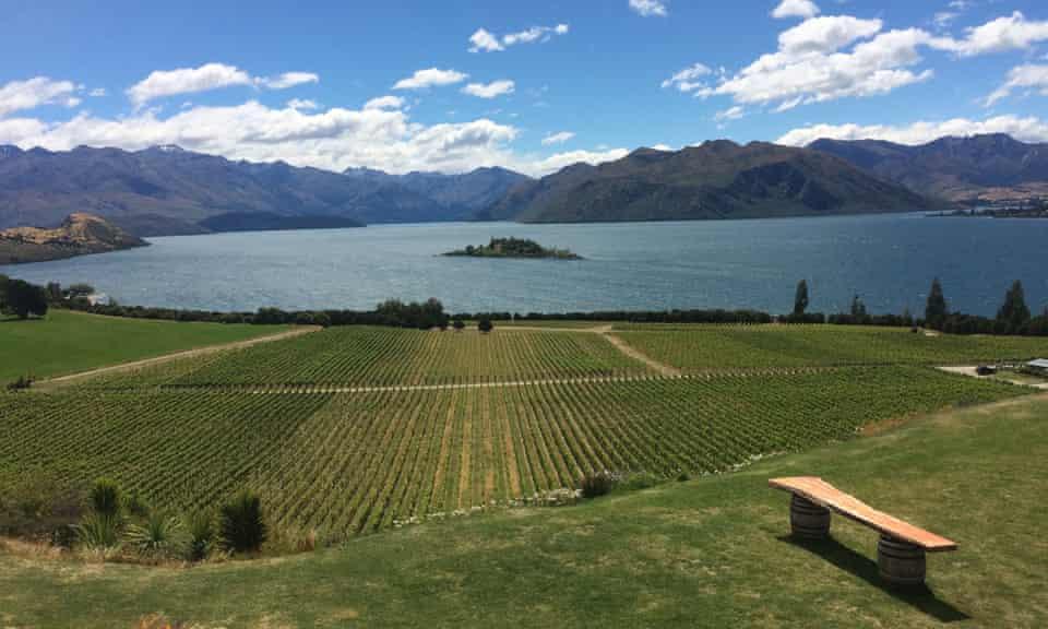 View of Lake Wanaka from the Rippon vineyard.
