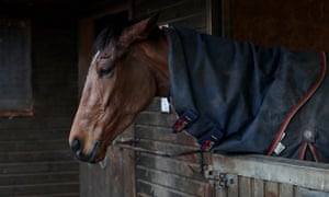 No horses will be racing in Britain for at least five days as the sport awaits test results on a more than 100 horses which could have been exposed to equine influenza.