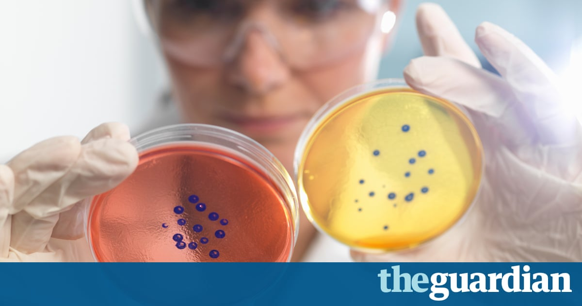 Charlatans threaten stem cell research with unproven cures, say experts