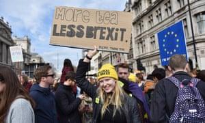 Less Brexit placard