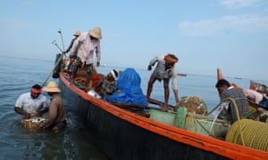 In Chethy harbour, Kerala, fishermen carry their catch to the beach front in baskets