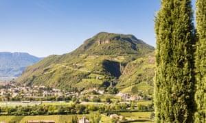 Hillsides and vines near Bolzano.