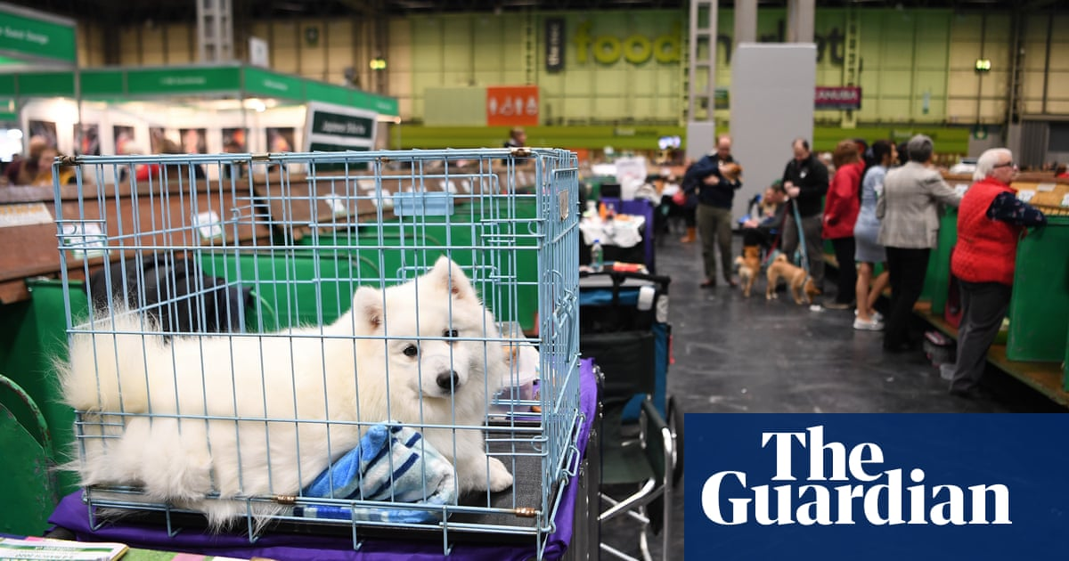 Crufts organisers blame Brexit for fewer overseas dog entries