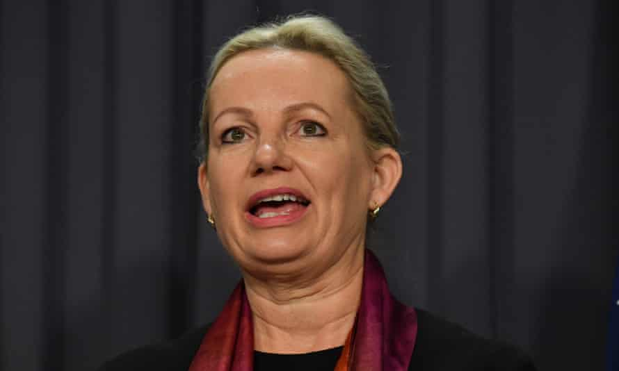 Environment minister Sussan Ley