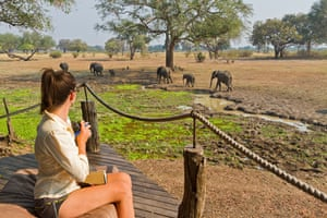 Visitor watching elephants from deck at Robin Pope Safari Lodge, South Luangwa Valley, Zambia, Africa