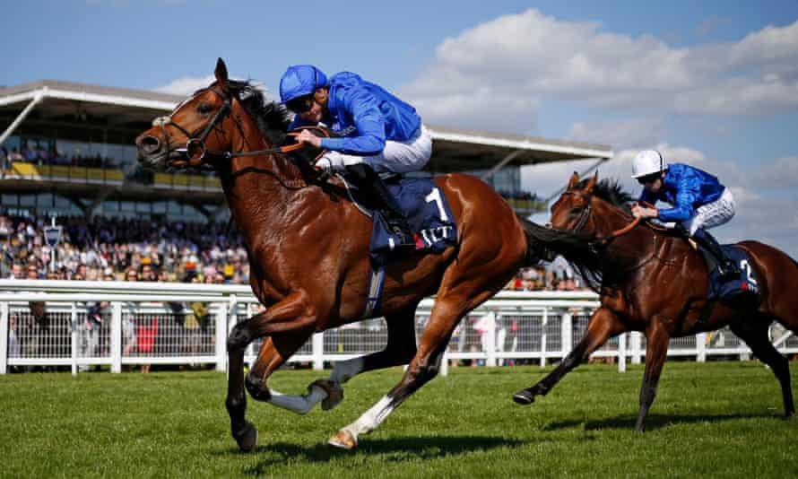 2000 guineas betting 2021 olympics sports betting africa today fixture